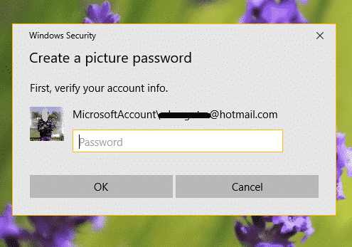 verify-your-account