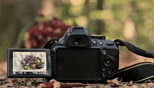 10 Best Digital Cameras Under $100