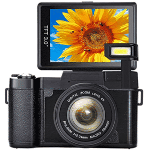 digital camera showing sunflower in LCD