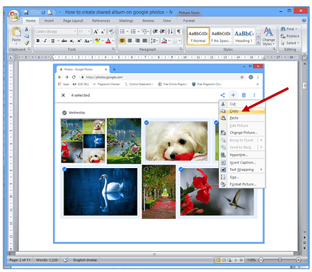 image showing picture tool in word