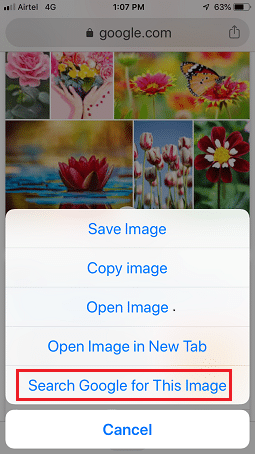 reverse image options on iphone's screen